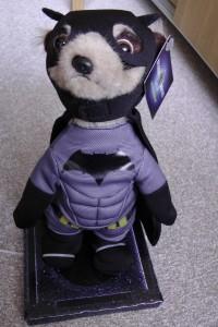 Batman Meerkat